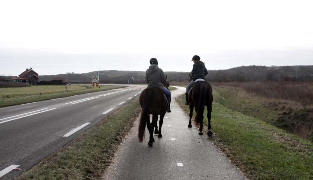 Paardrijden in Zoutelande