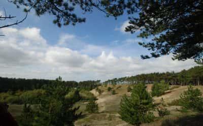 Naturschutzgebiet Oranjezon