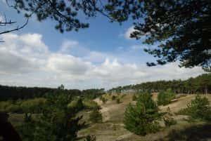 natuurgebied-oranjezon-vrouwenpolder-2-285649